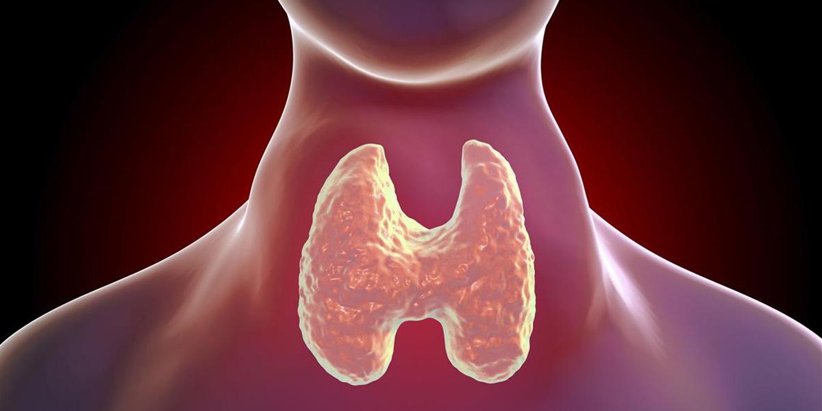 Ghiandola tiroide