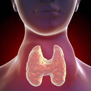 Yoga per la ghiandola tiroide