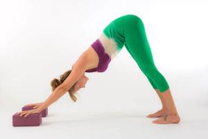 cane a faccia in giu con due mattoni da yoga