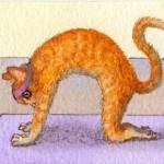 Come fare Marjariasana, la posizione del gatto