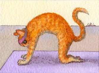 Marjariasana la posizione del gatto