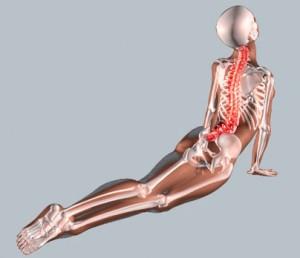 yoga per il mal di schiena