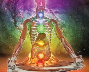 corpo energetico fisiologia yoga