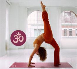 yogistar il marchio