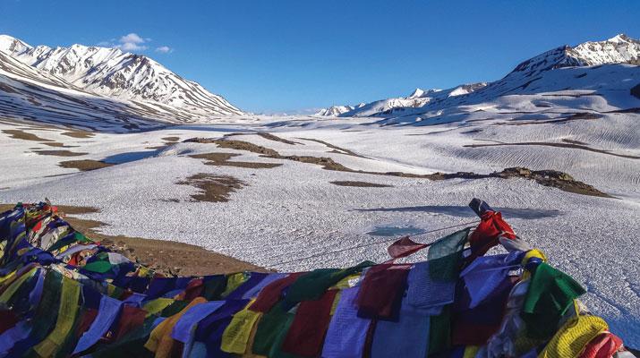 storia 5 tibetani