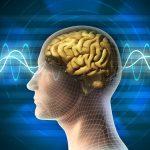Benefici della meditazione: perché meditare fa bene alla salute