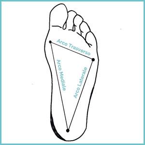archi plantari del piede