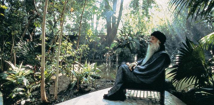 il percorso di osho verso il paradiso