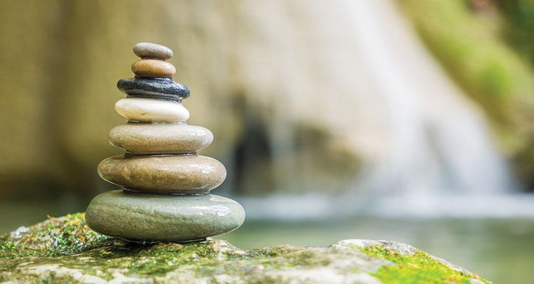 Libri sulla meditazione zen