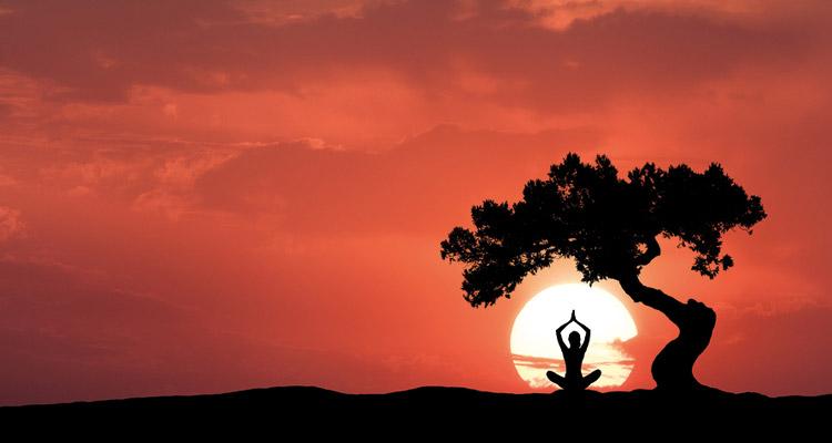 Il significato di Purusha e Prakriti