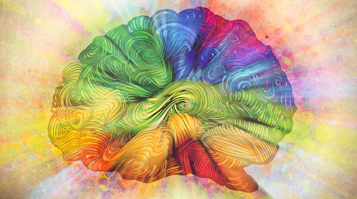 La mente equilibrata