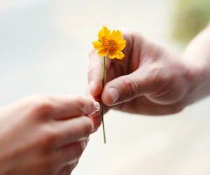 Metta amorevole gentilezza