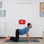 Yoga per principianti: video lezione completa di 30 min