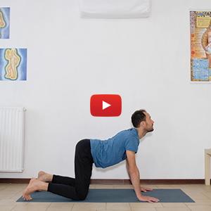 Yoga per principianti 30 min